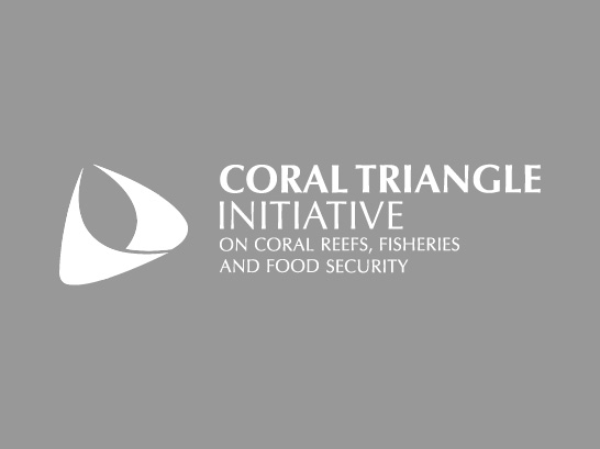 Workshop on Catch Documentation and Traceability (CDT