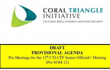 DRAFT PROVISIONAL AGENDA Pre-Meetings for the...