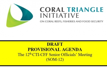 DRAFT  PROVISIONAL AGENDA  The 12th CTI-CFF...