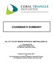 Chairman's Summary SOM-12, Papua New Guinea, 1-2 November 2016